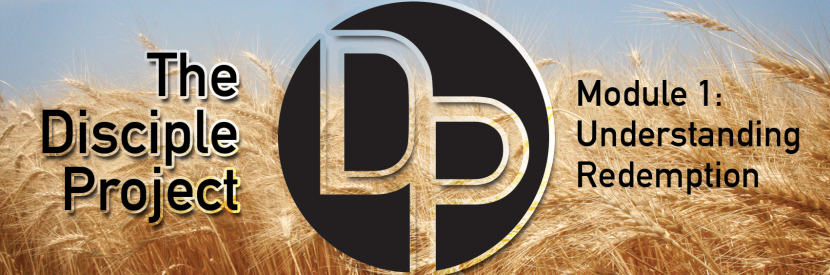 DP-Header