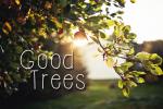Good Trees