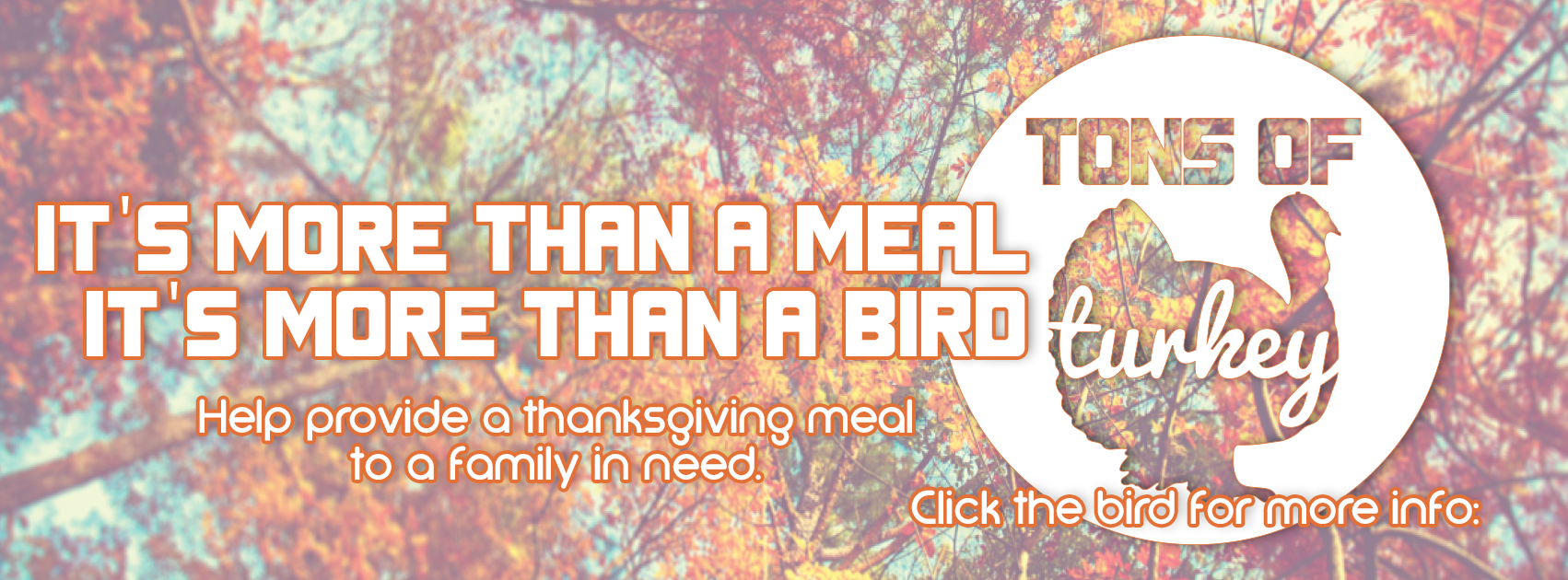 It's More Than A Meal…More Than A Bird