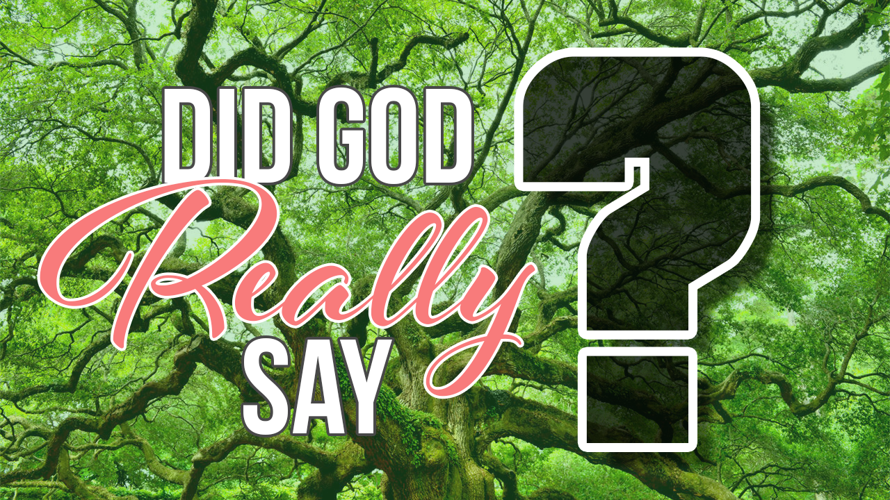 Did God Really Say? Part 2: Lies We Believe About God