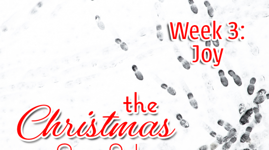 The Christmas Set Up, Week 3: Joy