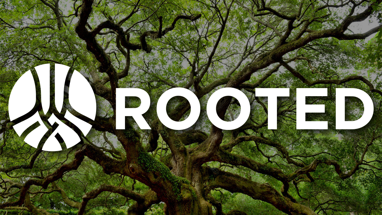 Rooted: Ideas & Isolation